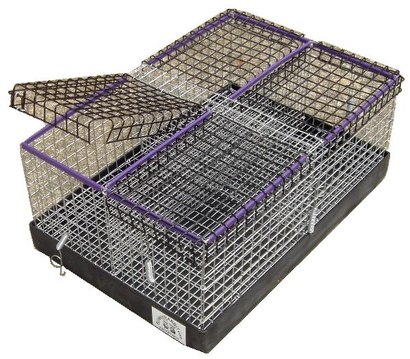 Bunnyrabbit Com Rabbit Carrier Bunny Carrier Rabbit