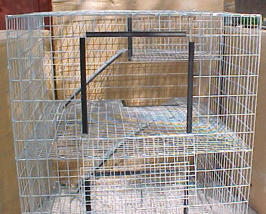 Bunnyrabbit Com Rabbit Cage Rabbit Hutch Rabbit Condo