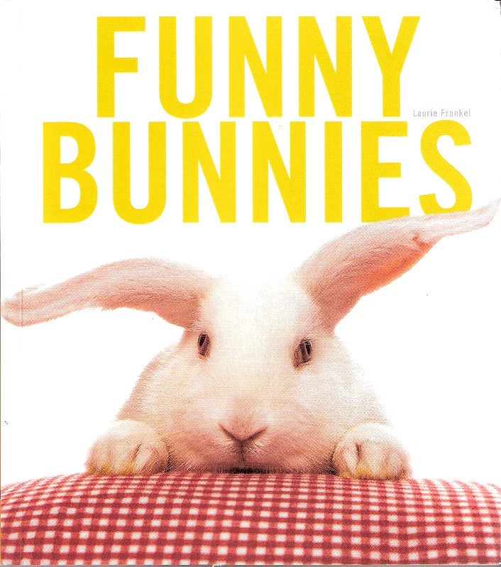funny bunny. your very own Funny Bunny.