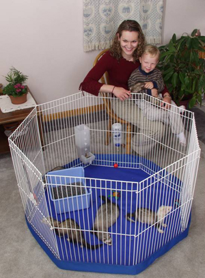 Cage Large Clean Living Playpen